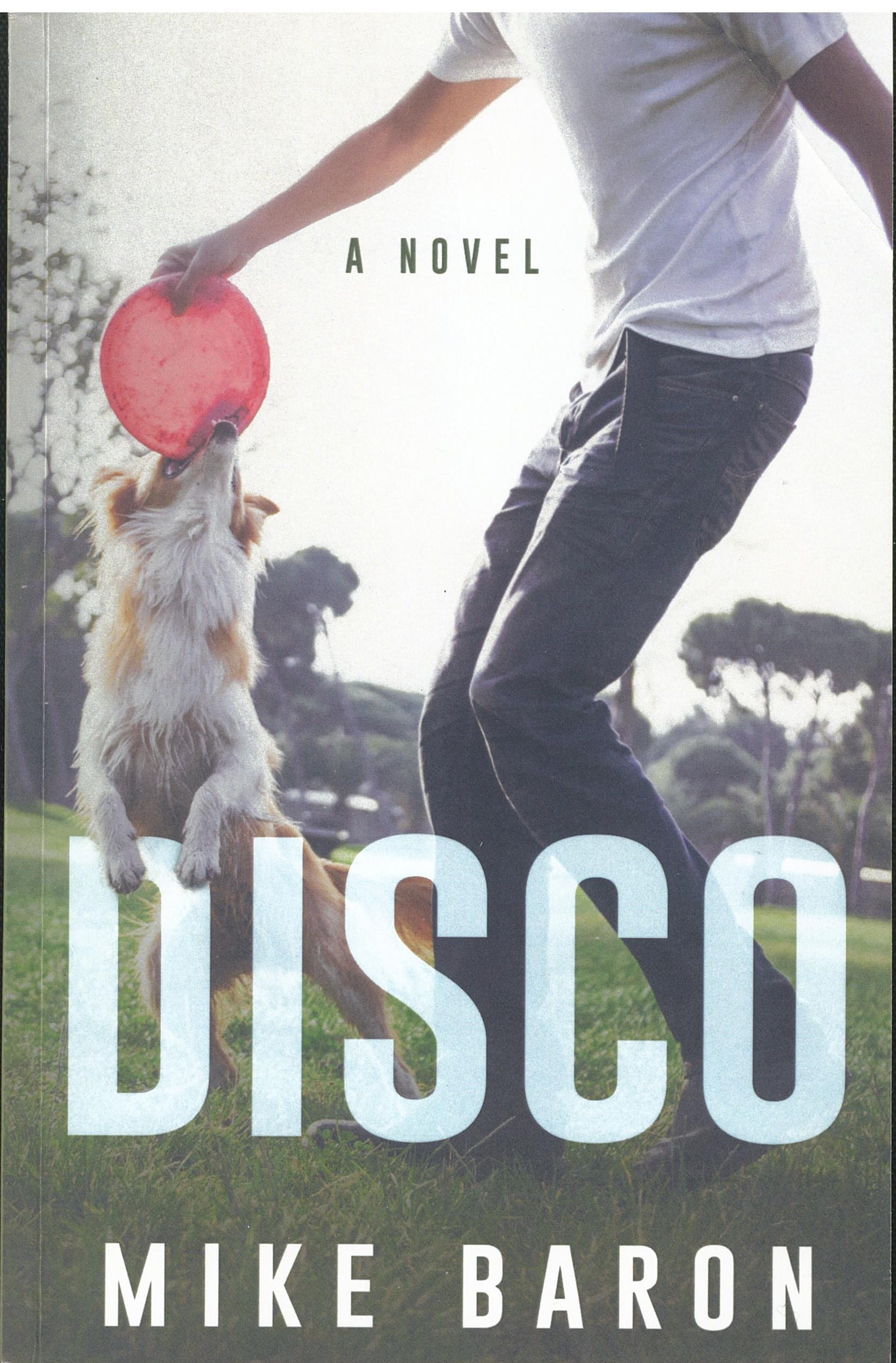 'Disco' Book Review By Ron Fortier