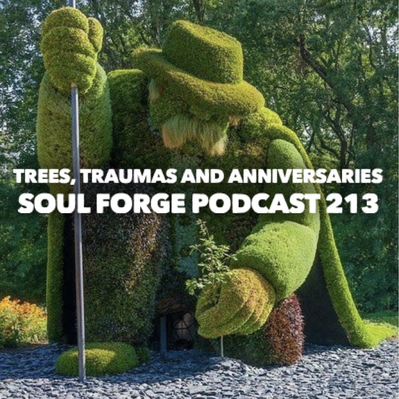 Trees,Traumas and Anniversaries